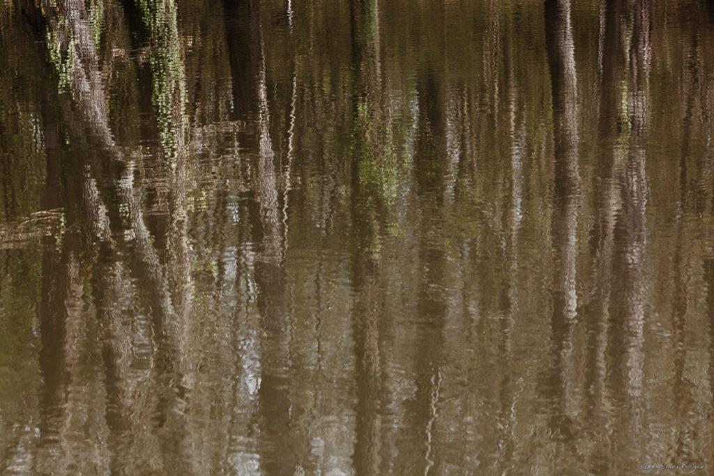 photographe-artistes-reflets-eau
